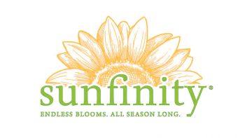 Logo Helianthus Sunfinity Aangepast